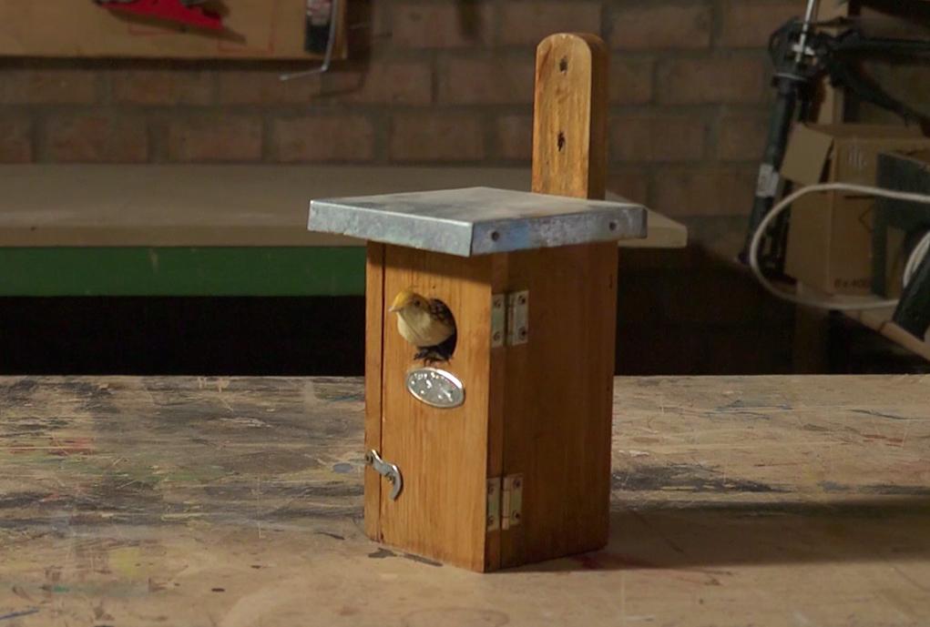impermeabilizzare casetta in legno