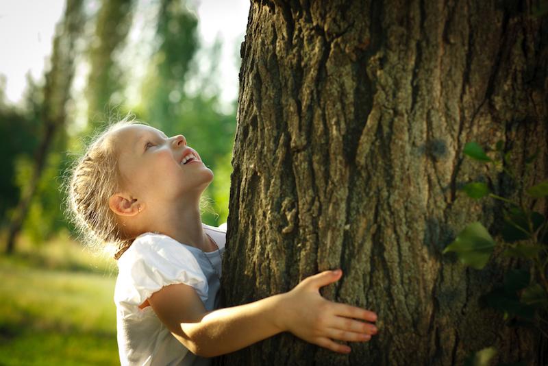 piantare un seme pratica sostenibile