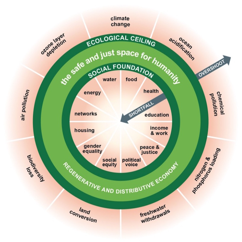 modello economico kate Haworth