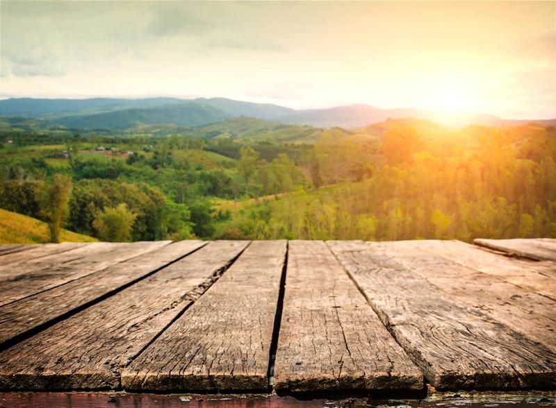 Certificazione FSC legno e non legno