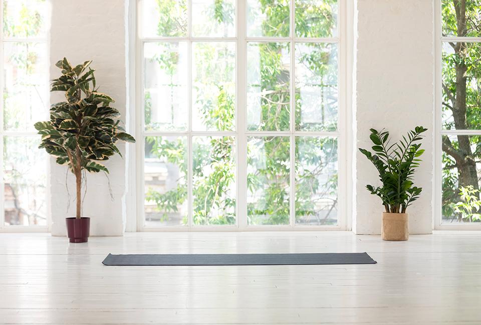 Disporre le piante in casa: incorniciare una porta finestra