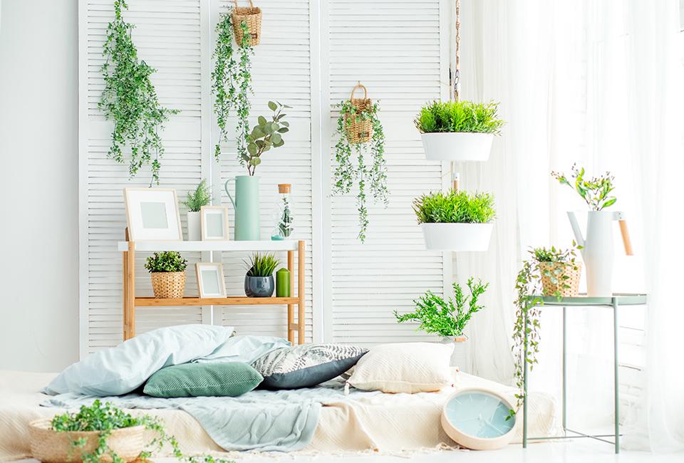 Disporre le piante in casa: sfruttare gli spazi verticali