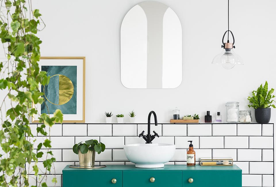 Disporre le piante in casa: in bagno