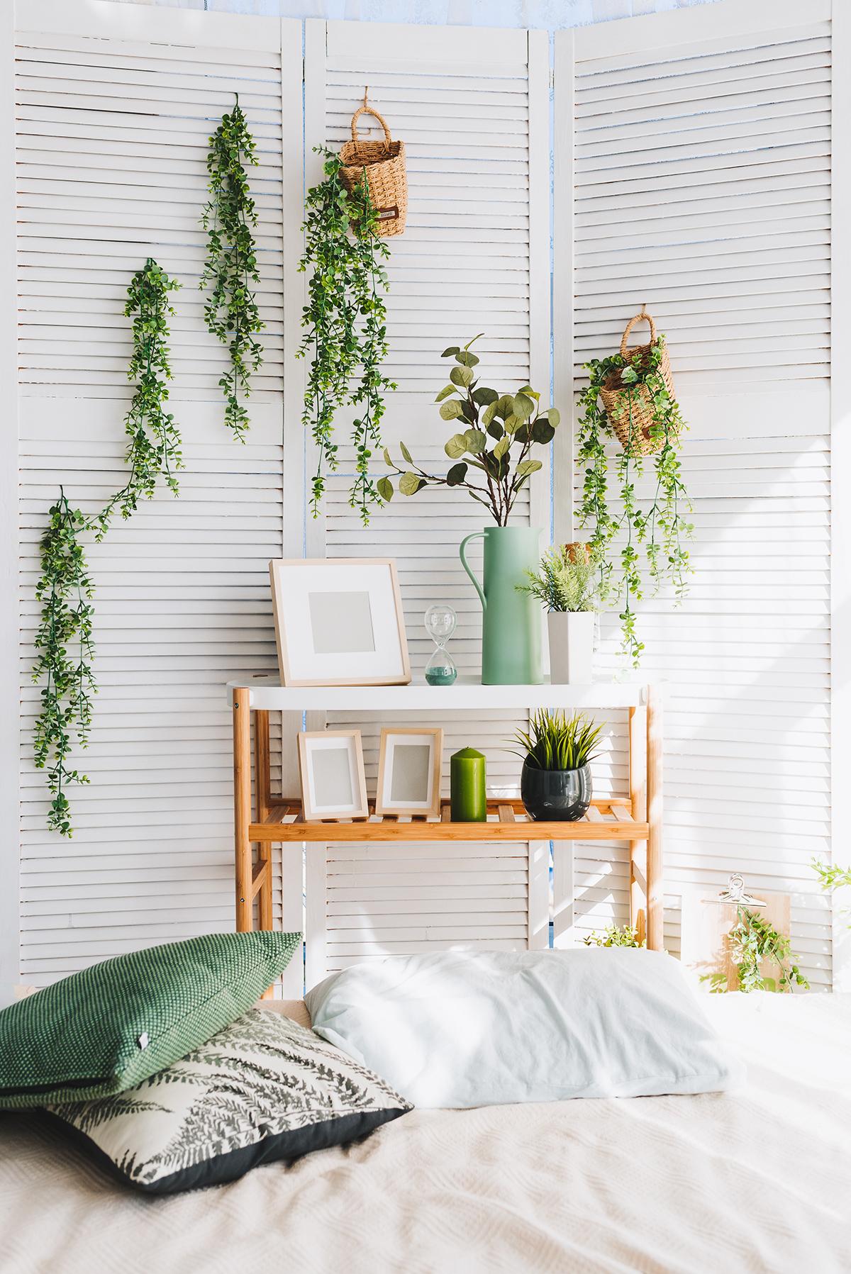 Riutilizzare le vecchie persiane come porta-piante